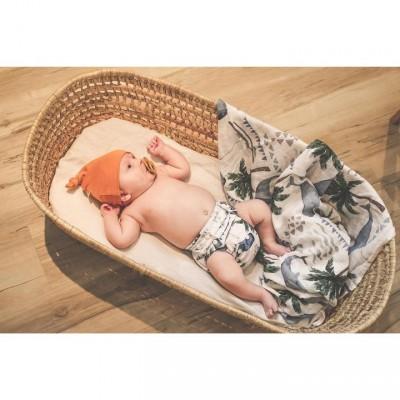 Kit de départ  nouveaux-né 12 couche lavables Mme&Co (6 à 20 lbs))