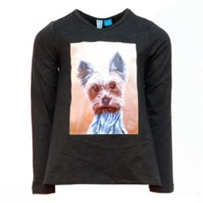 Chandail chien Blü