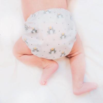 Couche lavable nouveau-né Petit Prince La Petite Ourse (7-15 lbs)
